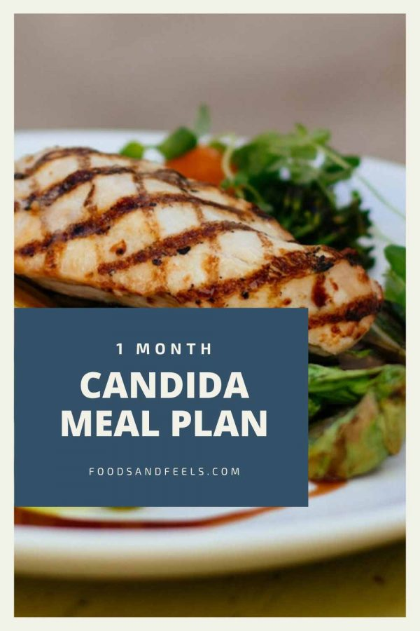 1 month candida diet meal plan
