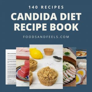 candida diet recipe book